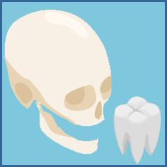 Maxillo-faciale et odontologie